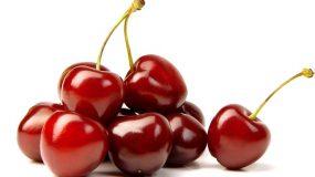 cerisier prunus avium traitements plus courantes maladies ravageurs arbre fruitier