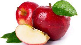 pommier malus domestica traitements plus courantes maladies ravageurs arbre fruitier