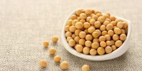 soybean-glycine-max