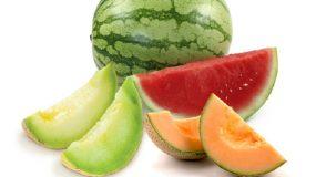 melons citrullus vulgaris