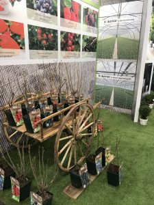 IPM Essen 2019 shrubs