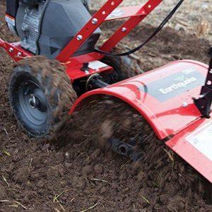 raspberry rubus idaeus - preparing the soil