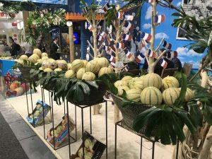 Fruit Logistica 2019 melons