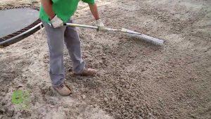 sweet potato ipomoea batatas - preparing the soil