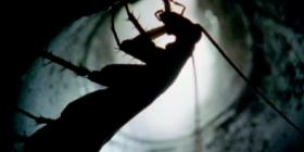 scarafaggi americani Periplaneta Americana come sbarazzarsi degli