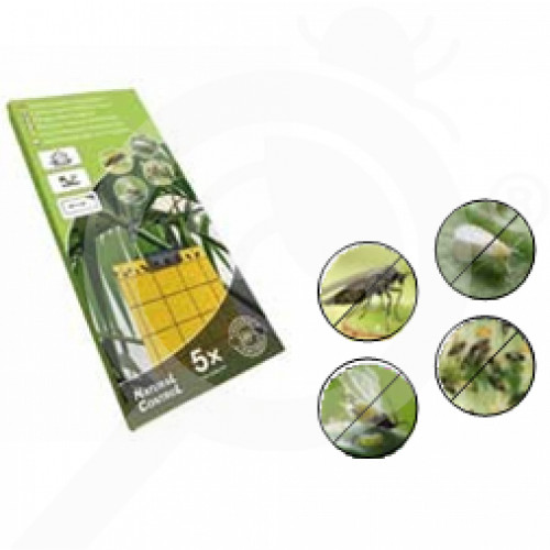 tr natural control adhesive trap fly tape set of 5 - 1