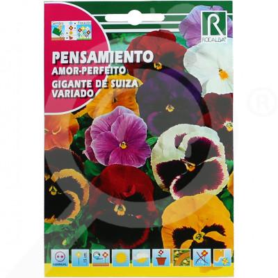 de rocalba seed pansy amor perfeito gigante de suiza variado 0 5 - 0
