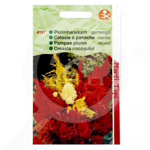 de pieterpikzonen seed celosia plumosa 0 5 g - 0, small