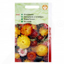 it pieterpikzonen seed helichrysum 0 75 g - 1, small