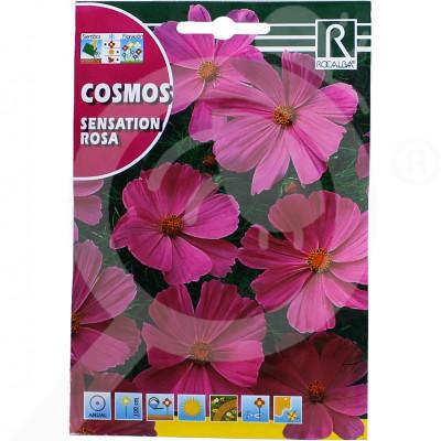 eu rocalba seed daisies sensation rosa 6 g - 0