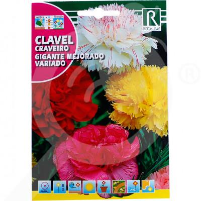 eu rocalba seed carnations gigante mejorado variado 1 g - 0