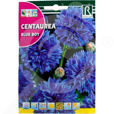 eu rocalba seed blue boy 10 g - 0