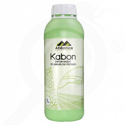 eu atlantica agricola insecticid agro kabon 1 litru - 1