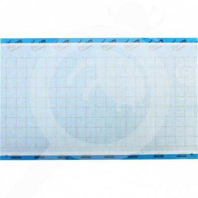 eu russell ipm adhesive trap impact blue 40 x 25 cm - 0