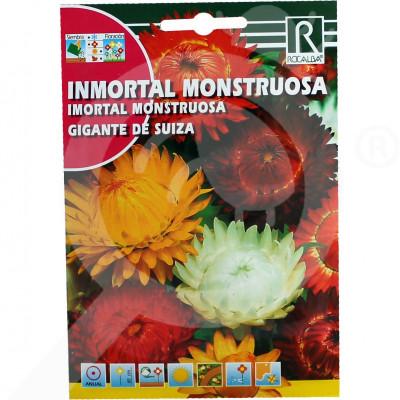 eu rocalba seed gigante de suiza 3 g - 0