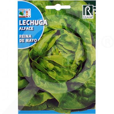 eu rocalba seed green lettuce reina de mayo 6 g - 0