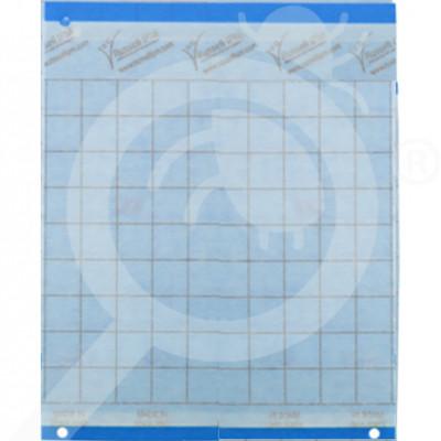 eu russell ipm adhesive trap impact blue 20 x 25 cm - 0