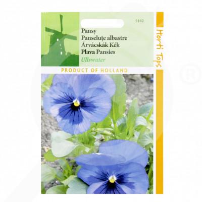 eu pieterpikzonen seed viola swiss giant ulswater 0 25 g - 1