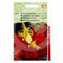 eu pieterpikzonen seed celosia plumosa 0 5 g - 1, small