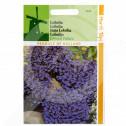 eu pieterpikzonen seed lobelia erinus cristal palace 0 08 g - 1, small