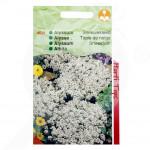 eu pieterpikzonen seed alyssum snowcloth 0 5 g - 1, small
