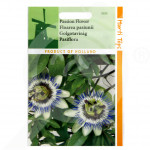 eu pieterpikzonen seed passiflora coerulea 0 33 g - 1, small