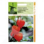 eu pieterpikzonen seed physalis peruviana 0 25 g - 1, small