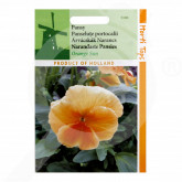eu pieterpikzonen seed viola swiss giant orange sun 0 15 g - 1, small