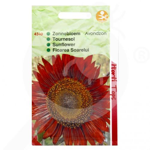 eu pieterpikzonen seed helianthus evening sun 4 g - 1, small