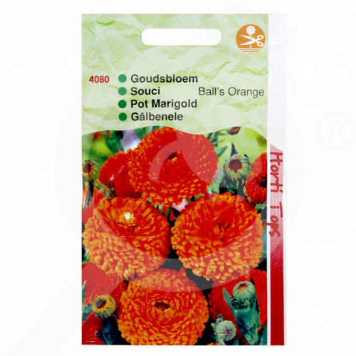 eu pieterpikzonen seed calendula officinalis balls orange 2 g - 1, small