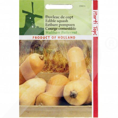 eu pieterpikzonen seed walham butternut 2 g - 1, small