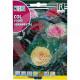 eu rocalba seed ornamental cabbage 1 g - 0, small