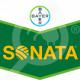 eu bayer fungicide sonata sc 5 l - 0, small