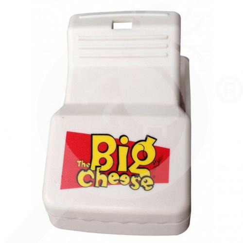 eu stv international trap big cheese rat - 4