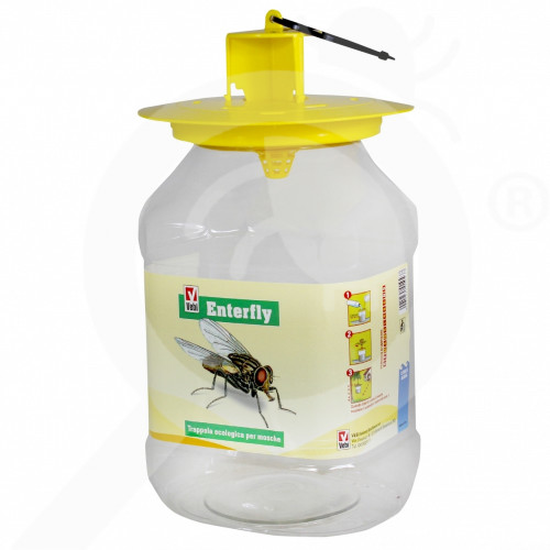 enterfly fly trap - 1