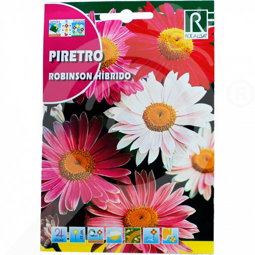 eu rocalba seed chrysanthemum robinson hibrido 1 g - 0