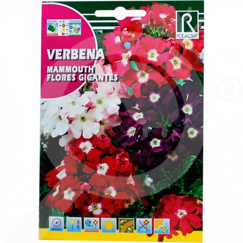 eu rocalba seed verbena mammouth flores gigantes 1 g - 0