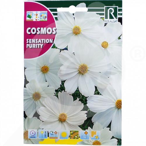 eu rocalba seed daisies sensation purity 6 g - 0