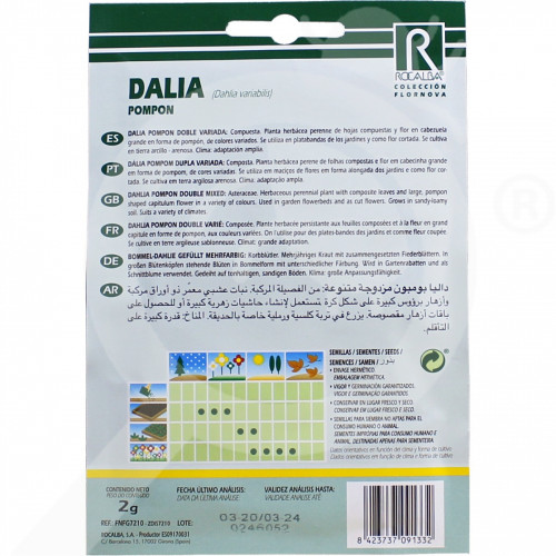 eu rocalba seed dahlia pompon 2 g - 0