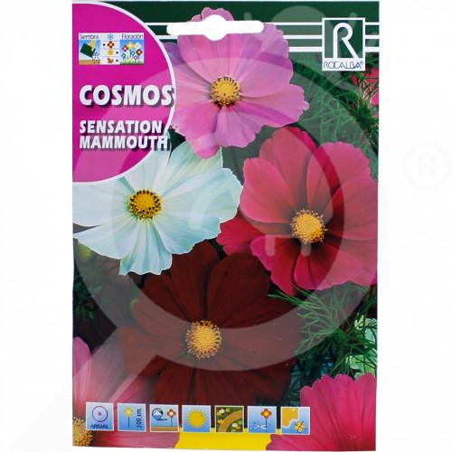eu rocalba seed daisies sensation mammouth 10 g - 0
