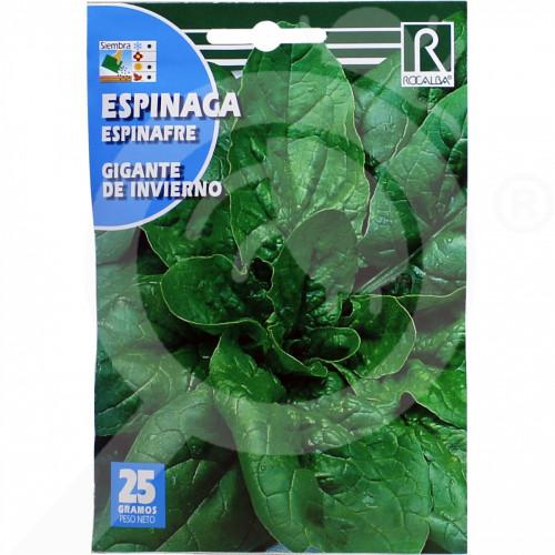 eu rocalba seed spinach gigante de invierno 25 g - 0