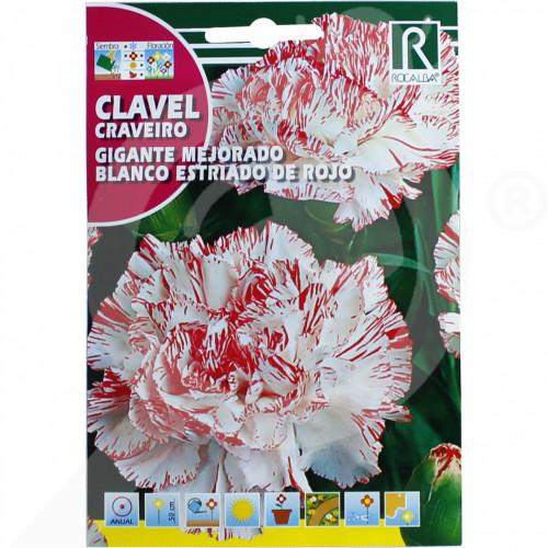 eu rocalba seed carnations gigante mejorado blanco estriado de r - 0