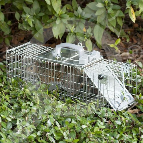 woodstream trap havahart 1082 - 8