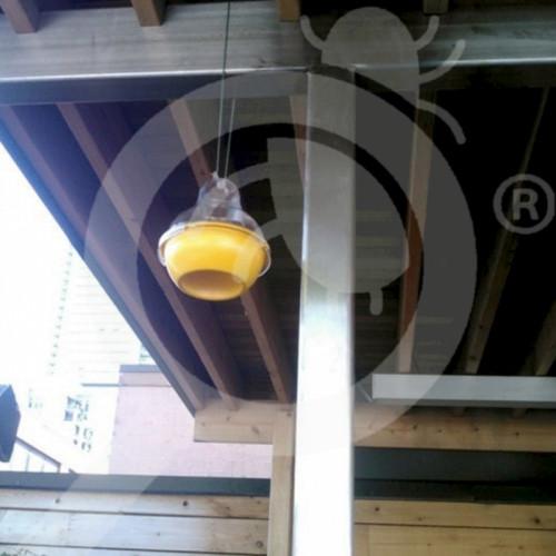 eu agrisense trap wasp dome attractant wasp bait 1 l - 0