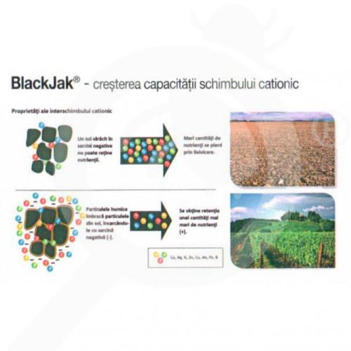 eu cig growth regulator blackjak 100 ml - 0