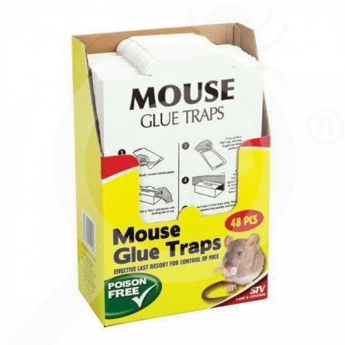 stv trap big cheese 190 mouse adhesive - 4