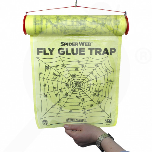 catchmaster trap spiderweb - 1