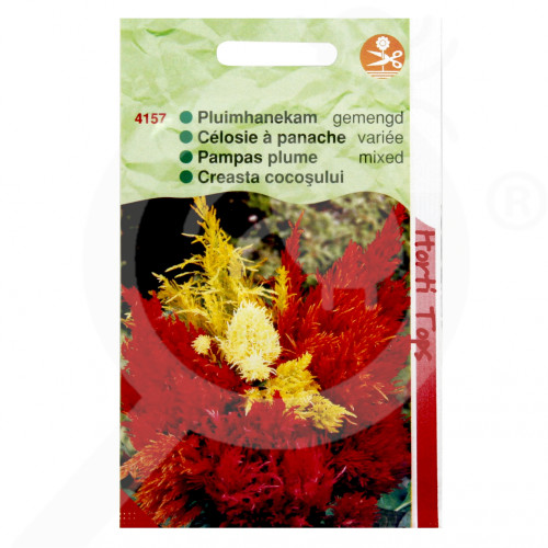 eu pieterpikzonen seed celosia plumosa 0 5 g - 1