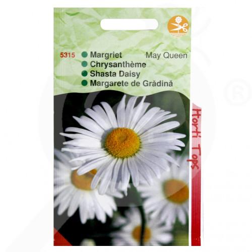 eu pieterpikzonen seed chrizantemum mayqueen 0 75 g - 1