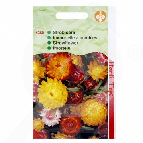 eu pieterpikzonen seed helichrysum 0 75 g - 1